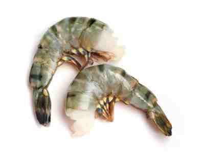 Tiigerkrevetid BLACK TIGER PRAWNS, RAW, HEAD OFF, TAIL ON SHELL ON 16/20, 1kg