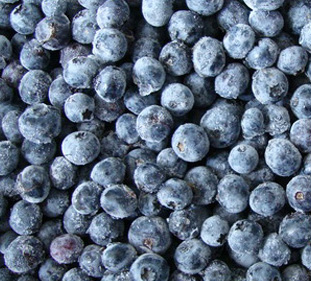 Organic Blueberries frozen 250g